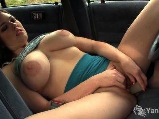 कार में संचिका एम्बर खिलौना उसे बिल्ली