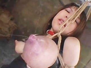 बाध्य स्तनपान