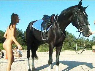 समुद्र तट पर एक घोड़े की सवारी नग्न किशोर सिर बदल जाता है