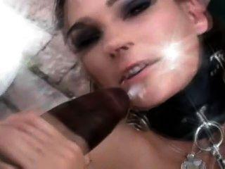 काला मुर्गा फूहड़ ट्रेनर 2 - अंतरजातीय संकलन - बीबीसी ♥