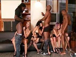 पोर्न के लॉर्ड्स से लैटिना नंगा नाच