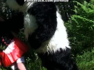 लिटिल रेड राइडिंग हूड लकड़ी में पांडा के साथ कमबख्त