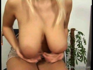 पामेला स्तन और बिल्ली खेलने