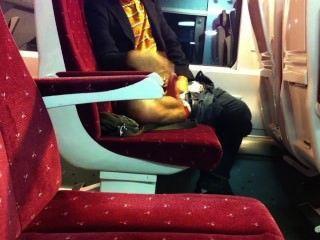 ट्रेन में झटका