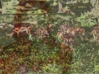 जारेड ब्रूक्स - 9 नग्न सुंदरियों ( द्वारा दृश्यों)