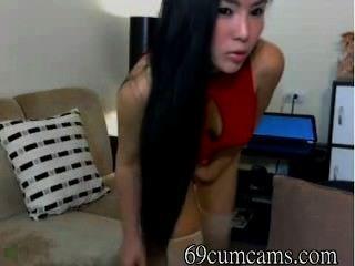 विशाल गधे के साथ एशियाई कैम पर नाचती