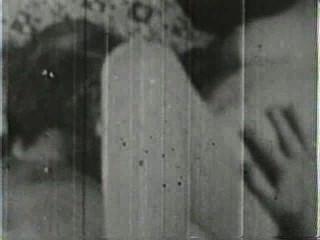 दृश्य 4 - क्लासिक 216 50 के दशक और 60 के दशकों स्टैग्स