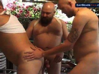 तीन बड़े भालू
