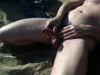 समुद्र तट पर बड़े स्कॉटिश मुर्गा शो