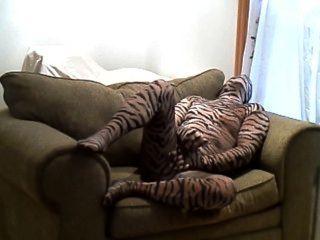 कामुक कठिन बाघ बंद झटके जबकि एक बड़ी कुर्सी पर झूठ बोल रही है