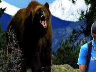 आदमी भालू पर fapping