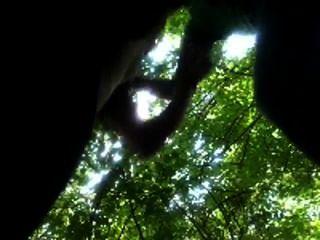 एमेच्योर आदमी से दूर बेकार पार्क जंगल में कॉलेज के दोस्त