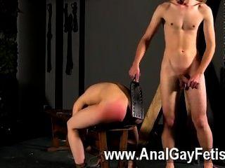 कट्टर समलैंगिक एक लाल गुलाबी गधे को