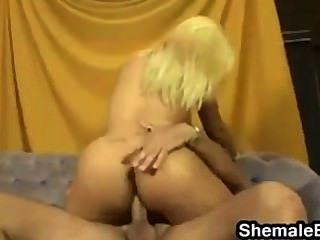 बड़े स्तन के साथ सेक्सी गोरा किन्नर