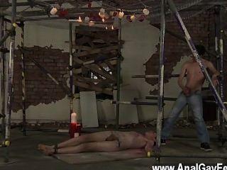 समलैंगिक अश्लील twink के लिए एक परपीड़क जाल