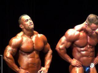 musclebulls नीले चमकदार posers