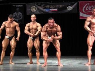 musclebull चांदी posers: Nabba चेक चैंपियनशिप 2014