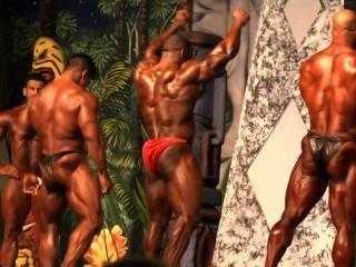 musclebull डैनियल: प्रतियोगी कोई 10 IFBB प्रो - डलास यूरोपा 2014
