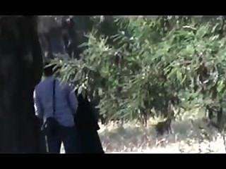 9hab सेक्स Algerie