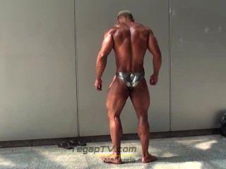 musclebull चमकदार चांदी posers