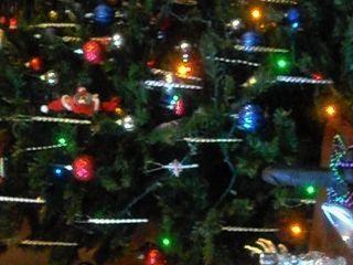 क्रिसमस के बारह दिन समलैंगिक, आनंद