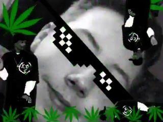 मैडिसन आइवी 420