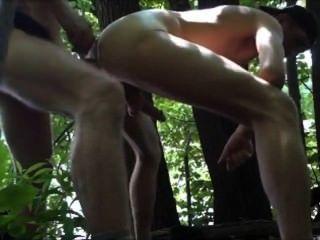 जंगल में दो बार गड़बड़