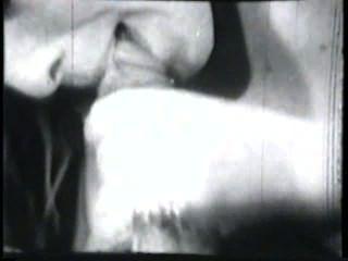 दृश्य 4 - क्लासिक 189 50 के दशक और 60 के दशकों स्टैग्स