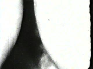 दृश्य 4 - क्लासिक 214 50 के दशक और 60 के दशकों स्टैग्स