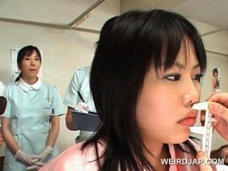 एशियाई प्यारा रोगी बिल्ली स्त्री रोग विशेषज्ञ से जाँच हो जाता है