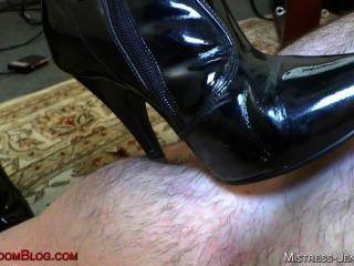 काले जूते बिल्ली पूजा और गधे खा में रिले