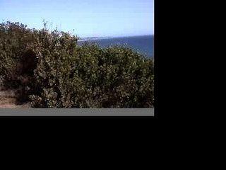 समुद्र तट से मालिबू सेक्स
