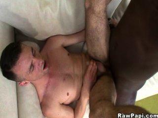 लैटिन समलैंगिक एक काला मुर्गा चूसा